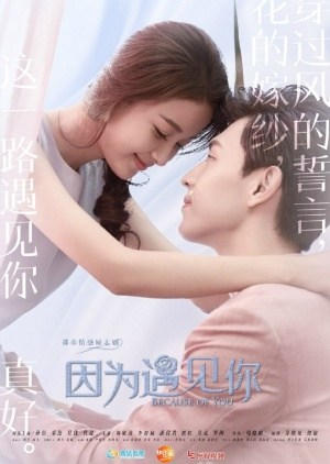 Drama China Because Of You Subtitle Indonesia